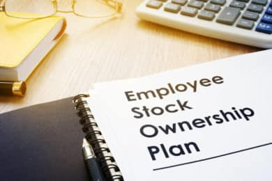 Evaluating Stock Options in a Job Offer
